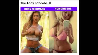 Best BOOBS Explained A to Z.