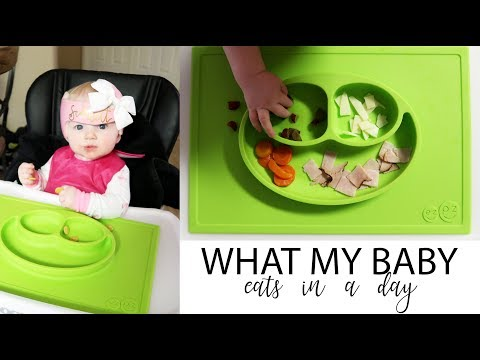 WHAT I FEED MY BABY IN A DAY - 7 months old / Daily Vlog