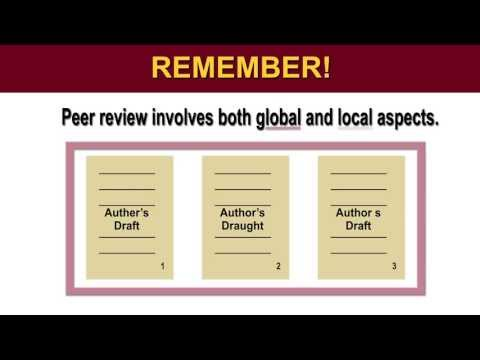 Peer Review: Commenting Strategies