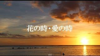 前川清さんの「花の時・愛の時」を歌ってみました。 Shin(しん)です。 3...