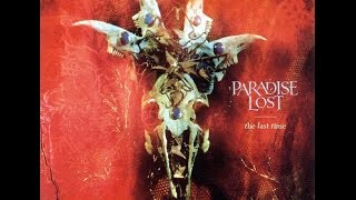 Paradise Lost - Accept The Pain Guitar Cover