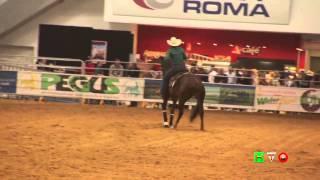 Cavalli a Roma - Salone dell