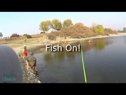 Fishing A Trout Plant At Quarry Lakes Fremont CA