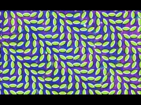 Animal Collective - In the Flowers