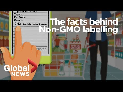 GMO foods: Why it's 'meaningless' to label genetically-modified organisms
