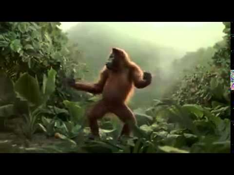 Dansende aap