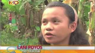 Pinoy MD: Solusyon sa tuyot at buhaghag na buhok