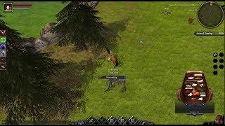 Открытие долгожданной MMORPG - Legends of Aria (Ultima Online 2)