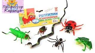 Развивающее видео! Учим песенку про паучка и названия насекомых. ПРоФЕССОР_КАРАПУЗ