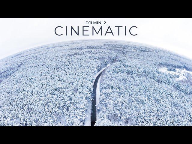 ❄️ Winter Magic | DJI Mini 2 Cinematic Footage | Drone Video
