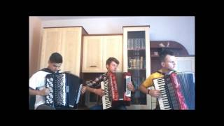 Bruno Mars -  Marry You (Crazy Accordion Trio Cover)
