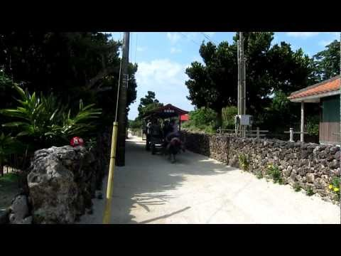 Water Buffalo Cart in Taketomi island Okinawa Japan / April 2012