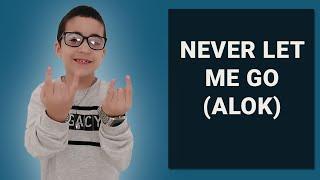 Baixar Never Let Me Go (Alok, Bruno Martini, Zeeba) - Interpretação Lucas Pegatin