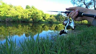 Эта Приманка Провоцирует На Поклевку! Рыбалка на реке на спиннинг летом.