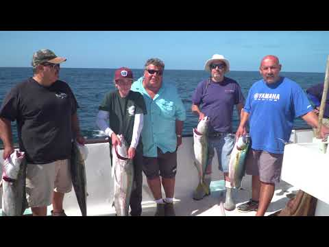 Black Pearl Fishing Report For October 1st. | SPORT FISHING