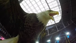 Challenger Soars at Arizona Cardinals vs San Francisco 49ers Game!