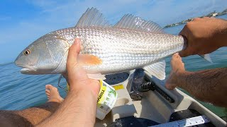 Tampa Bay Redfish & Speckled Trout [Island Fishing]