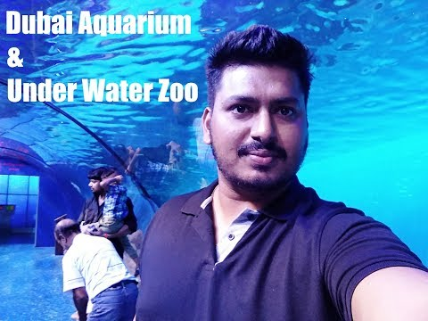 Actual Video: Dubai Aquarium | Under Water Zoo Experience in Dubai Mall *HD*