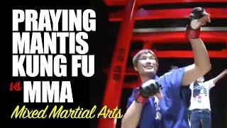 Praying Mantis Kung Fu vs MMA Mixed Martial Arts