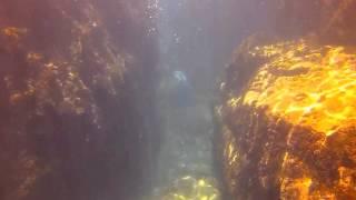 Копия видео Подводный мир Севастополя 2014 HD