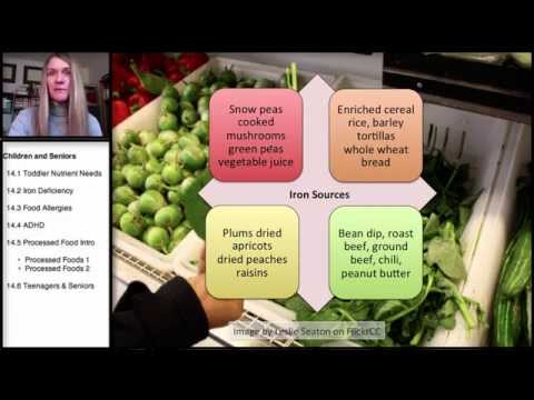 14.2 Nutrition in Childhood and the Older Years: Iron Deficiency