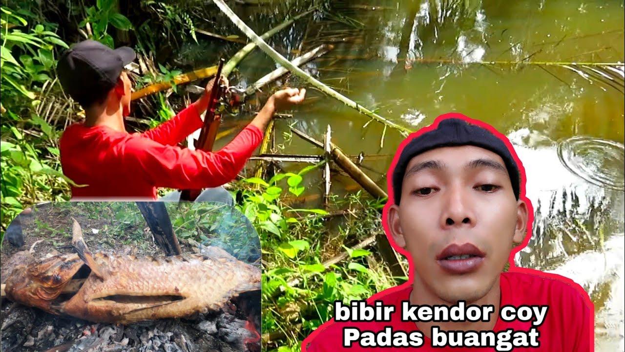 banjir bawa berkah!!!! paser ikan super babon di panggang cocol cabe level 1000