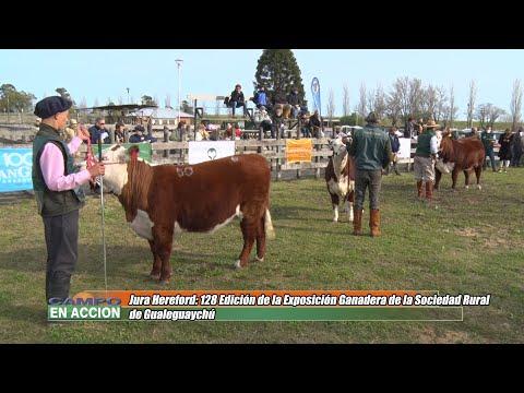 Juan José Primo - Cabaña La María de Brisa Sureña - Jura Hereford en la 128 Expo Ganadera de la Soc.Rural de Gualeguaychú