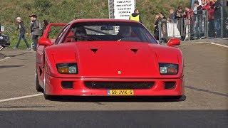 Ferrari F40 on the Track! Lovely Exhaust Sounds!