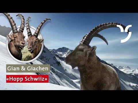 """Steinbock Spot """"Hopp Schwiiz"""""""