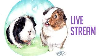 Drawing Guinea Pigs - Sketchbook Stream