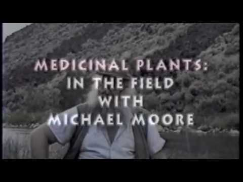 Medicinal Plants - In The Field With Michael Moore -1