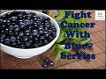 Fight Cancer With Blueberries || Health Benefits Of Blueberries || cancer prevention