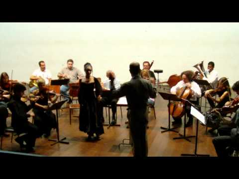 Orquestra Art Brasília - Ária da Rainha da noite