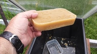 Rendering Beeswax In The Solar Wax Melter