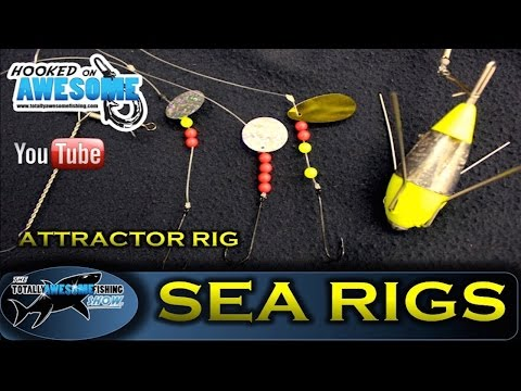 Sea Fishing Rigs - THE ATTRACTOR RIG - TAFishing Show