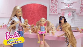 Puppy's in Overvloed | Barbie LIVE! In The Dreamhouse | Barbie