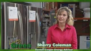 Santee Cooper Refrigerator Rebate Program