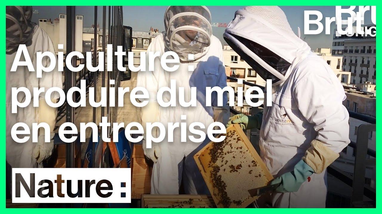 Des apiculteurs pour fabriquer du miel en entreprise