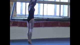 Спортивная гимнастика г. Хабаровск, вольные