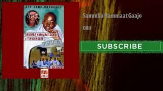 Sammba Hammaat Gaajo - Gilli