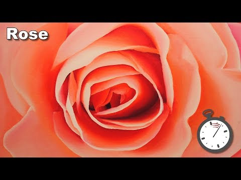 How to Paint a Rose in Oil timelapse painting lesson