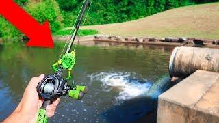 Fishing w/ TURTLES & FROGS in HIDDEN Farm Pond