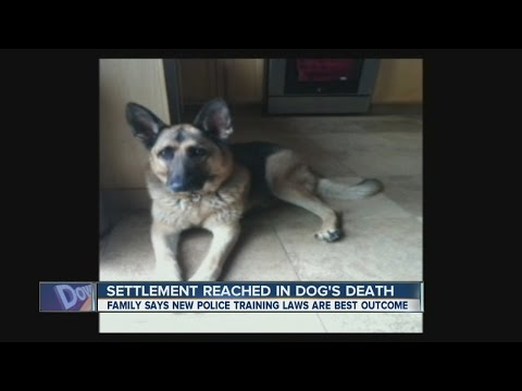 Settlement reached in police shooting of Erie dog