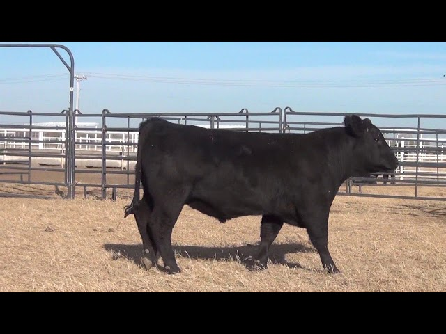 Express Ranches Lot 422