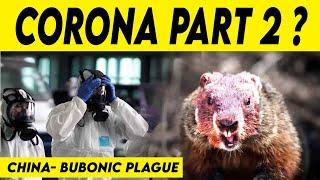 Bubonic Plague: கொரோனாவை தொடர்ந்து புபோனிக் பிளேக் நோய்: சீன மக்களுக்கு எச்சரிக்கை! | Corona Virus