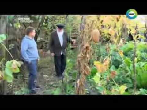 Молокане в азербайджане кедабекский район ивановка фото 42-465