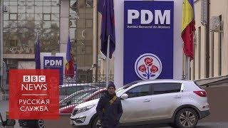 Молдова перед выборами: Плахотнюк, кот-кандидат и другие интриги