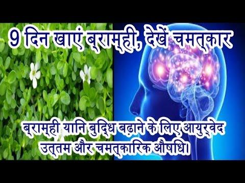 9 din khaye brahmi, dekhen chamatkar buddhi badhane ke liye ayurved ke anusar sabase uttam aushadhi