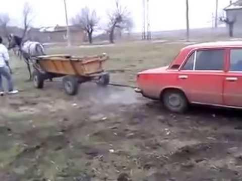 Resultado de imagem para konjska zaprega auto