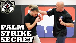 Bas Rutten's Palm Strike KO Secret Technique: Bone Strikes